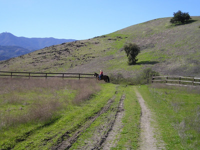 As we start the final leg of our rapid descent through the corral meadow, a rider vanishes ahead of us on our horse, one of only two we saw in our 3 hours there. The retired Mount Umunhum radar tower is in the distant left background.