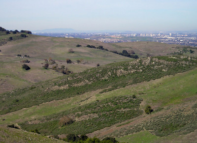 This is the first time in almost two hours on the trail that I've seen San Jose. The highrises of downtown are visible, and the San Francisco Bay is far beyond that.