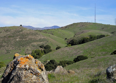 Coyote Peak's radio towers, and Mount Hamilton with its observatories lofting deep blue in the distance. The breeze is now an intense wind.