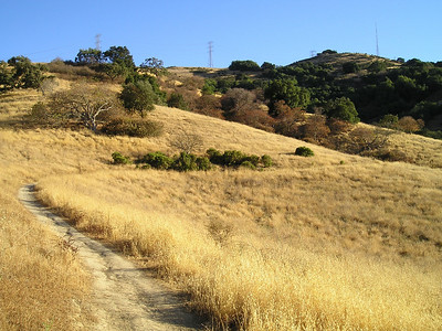 The lower trail winds gently around a hillside