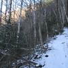 Ascending the Old Skidder Trail.