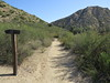 On the Espinosa Trail.