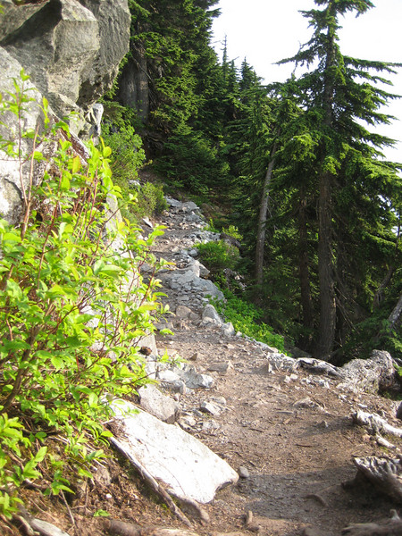 ascending the trail along the ridge to the summit