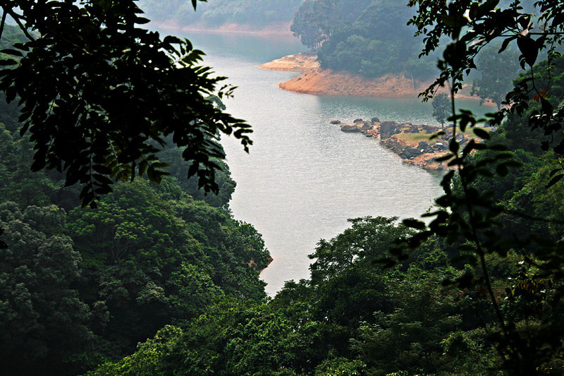 Shing Mun Country Park, Wilson Trail Stage 7, Shing Mun Reservoir