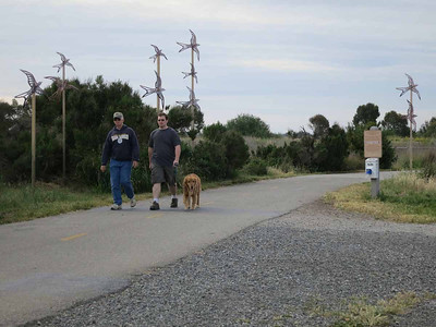 """Shoreline and nearby parks are filled with art. These birds are titled """"Swift Crossing"""" by Rachel Slick. Dogs are allowed on the main road only."""