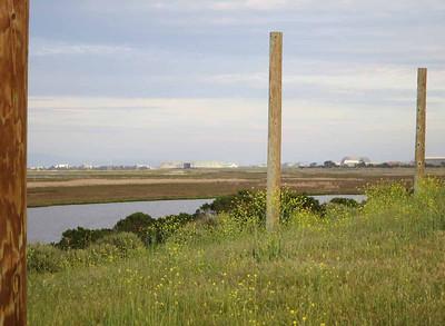 Looking from the Pole Field towards Moffett Field.