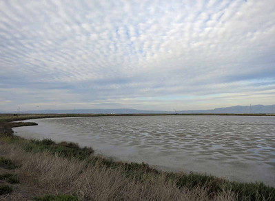 Loved how the pattern in the sky echoed the pattern of water and soil in the mud flats.