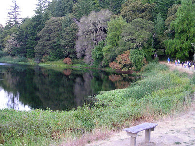 The trail wraps around Horseshoe Lake and sends us generally back towards parking.