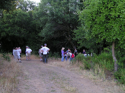 The group waits at a trail junction at the top of the hill.