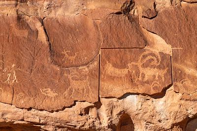 Bighorn Petroglyph Panel
