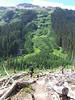 Massive Avalanche swath in the Buck Creek valley.