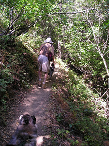 Tika, Dad, and Boost on the Lookout Trail