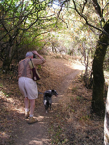 Dad and Boost hiking on the Lookout Trail.