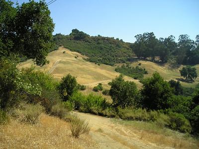 Trails in Fremont Older Open Space Preserve.