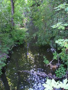 Stevens Creek