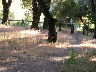A side trail.