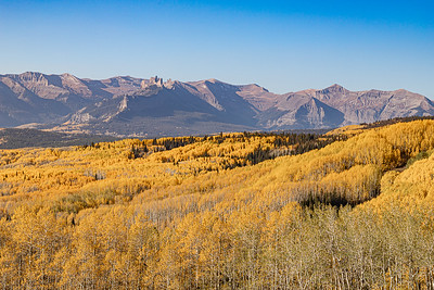 Mountains and Aspen Groves