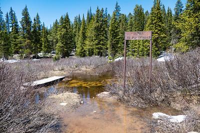 A bit Swampy at the Bear Lake Trailhead