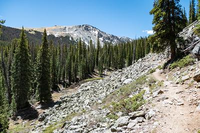 Rocky Trail towards Ptarmigan Lake
