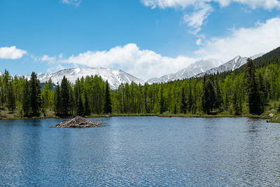 Lily Pond, Beaver Lodge and Mountains