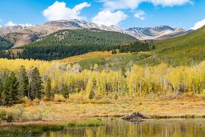 Fall Color Mountain Scene