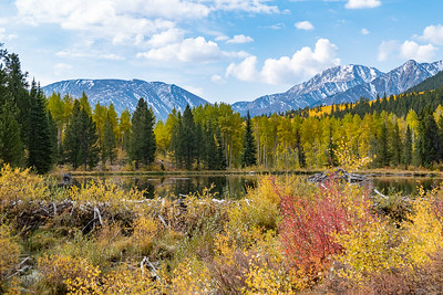 Pond, Fall Color, Mountains