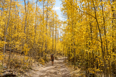 Stef and Aspen-Lined Trail/Road