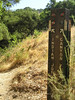 P6170013TrailSign2_rtX