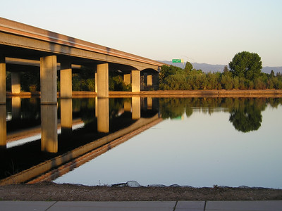Highway 85 viaduct over the percolation pond. Viaduct? Vi not a duct? First light is so golden.