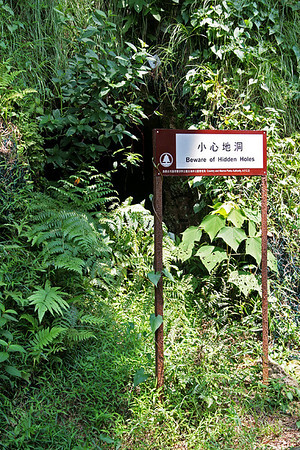 Tai Lam Country Park, MecLehose Trail Section 9