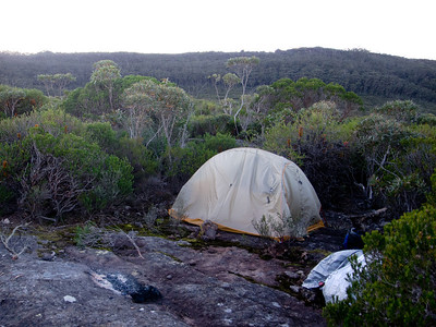 Our camp early in the morning after a windy night on the middle plateau of Mt Talaterang. Note the rocks holding the tent as we were unable to use the tent pegs on solid rock.