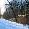 Heritage_Trail-2 1-30-14
