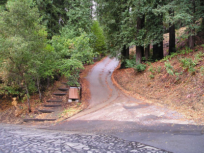 We carpooled to the trailhead, which oddly started out from this private, very steep driveway.
