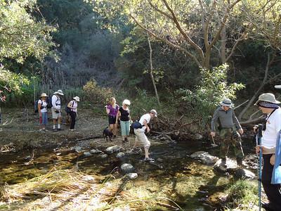Lynnmere / Wildwood Canyon Loop