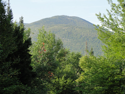 Mt. Tom, Field, Avalon