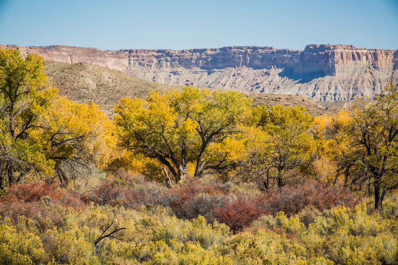 Fall Colors on way to Capitol Reef National Park
