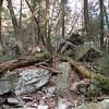 Rugged terrain below 4th cascade
