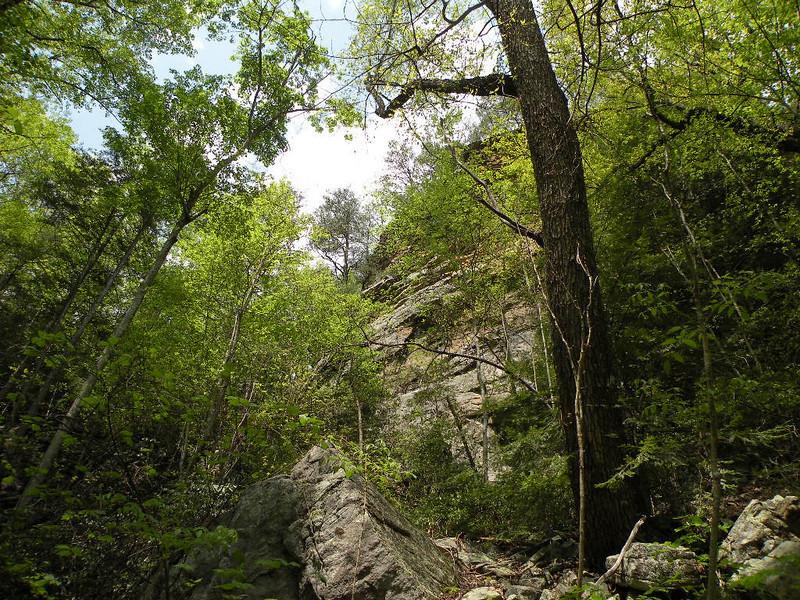 cliffs past suter falls