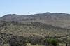 Pinyon Ridge