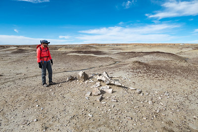 Stef and a Petrified Wood Pile