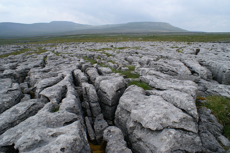 Limestone pavement with Whernside in the distance