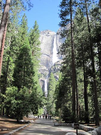 Yosemite Falls - July 2010