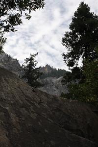 A view upward from along the Bridalveil path.