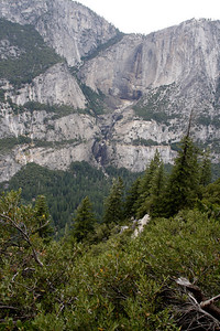 Another view of Yosemite Falls. I find myself fascinated by a completely dry cliff face in a place where iconic torrents often spill into the air from above.