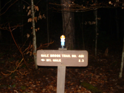 Mt. Hale, Nov. 28