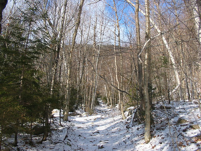 Duck Pond Mtn from Nancy Brook Trail