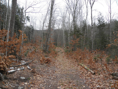 The trail is a road