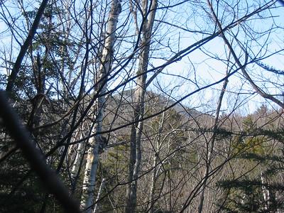 E. Scar Ridge
