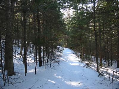 E. Pond Trail down low