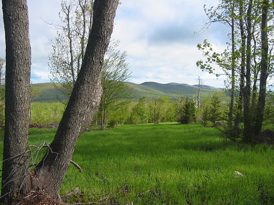 View towards Temple and Pack Monadnock